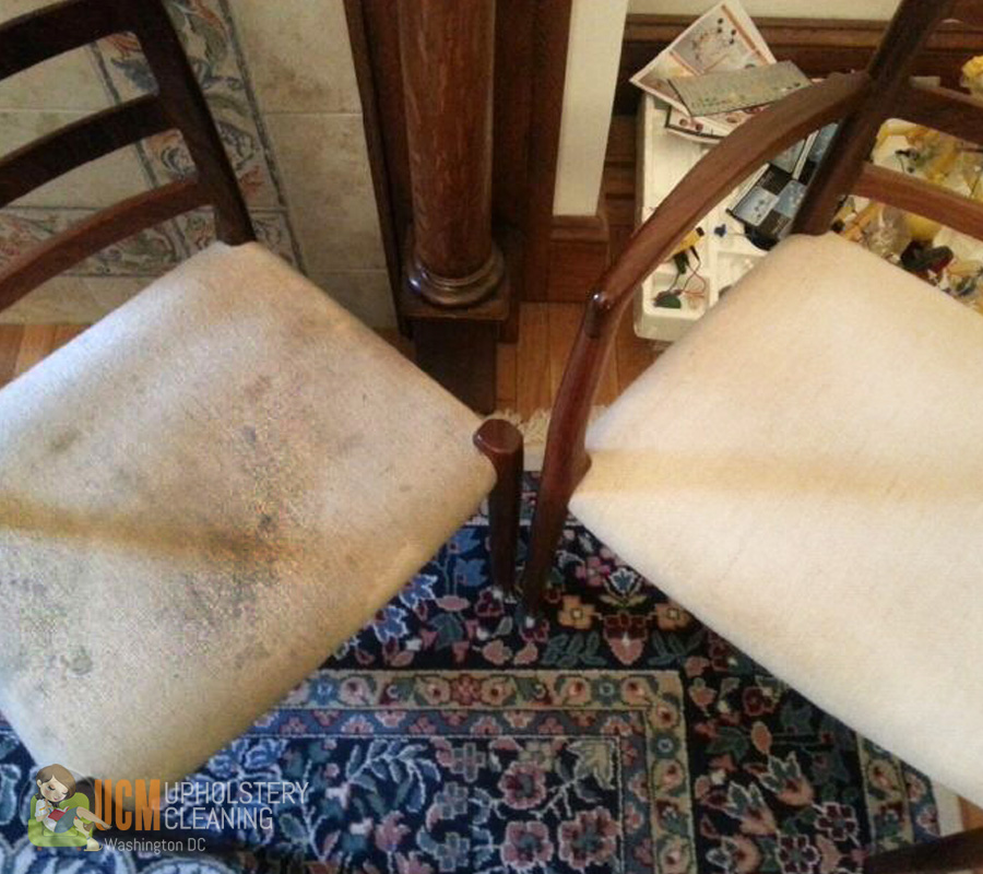 Upholstery Cleaning In Washington Dc Ucm Upholstery Cleaning